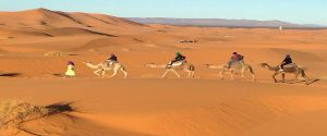 7 Days Morocco Desert Tour Tangier, exploring Chefchaouen, Fes, spend night in Desert camp, enjoy the camel ride in Merzouga desert end tour in Marrakech.